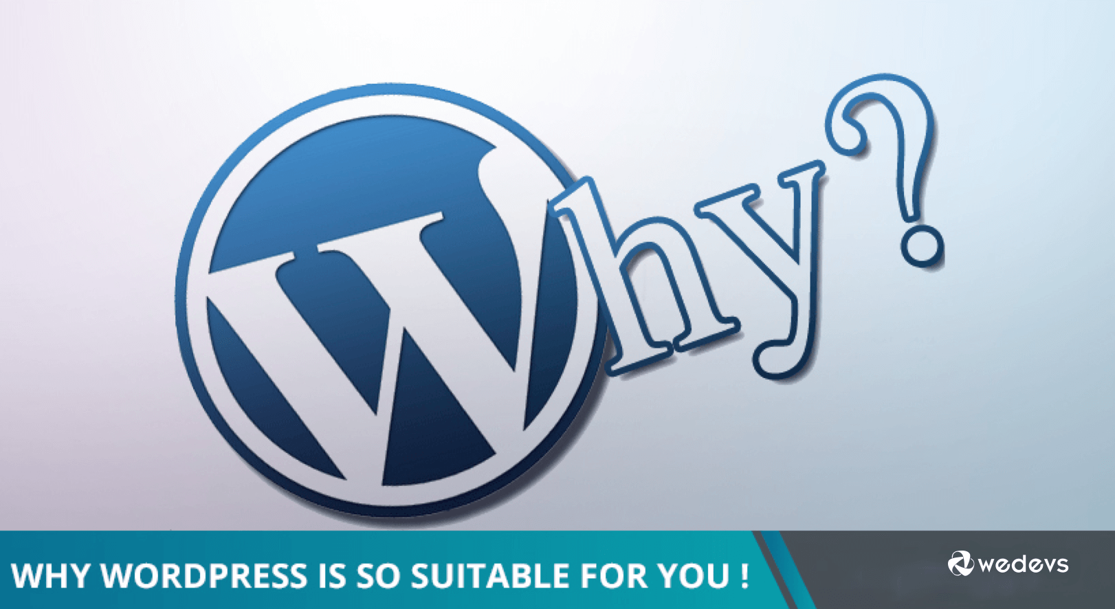 Why WordPress Is So Suitable For You!