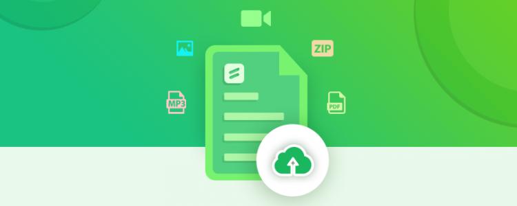 wordpress file upload form