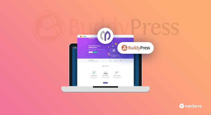 How to Use BuddyPress with WP Project Manager
