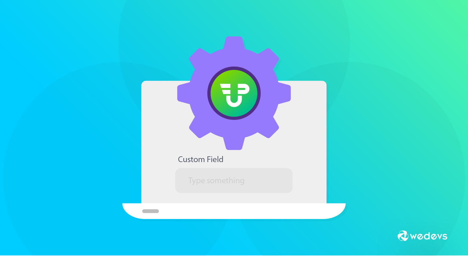 How to Use Custom Fields in User Submitted Posts