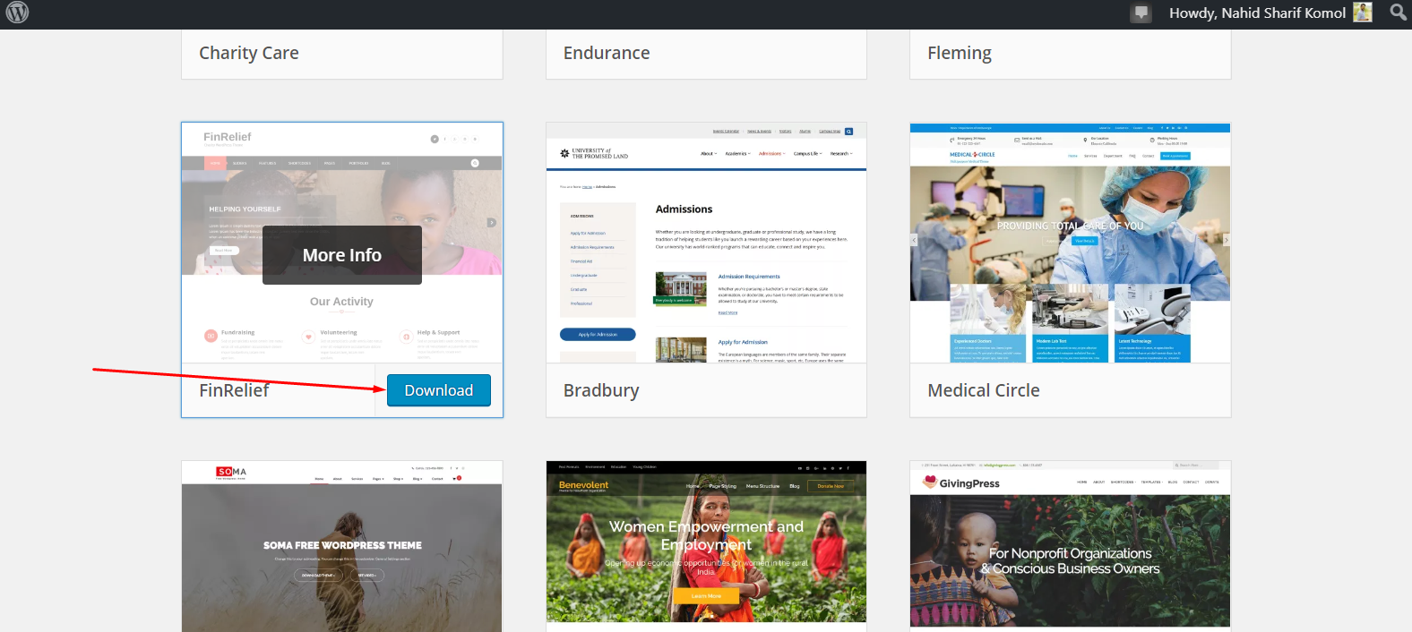 How to download a theme in WordPress