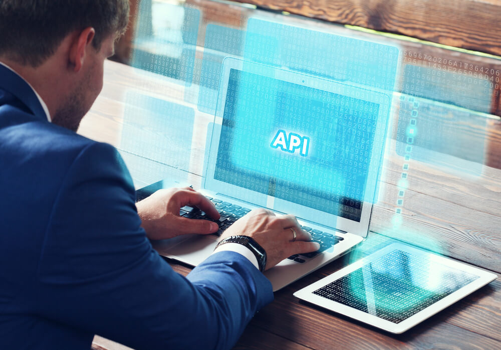 What are API Users and API Providers