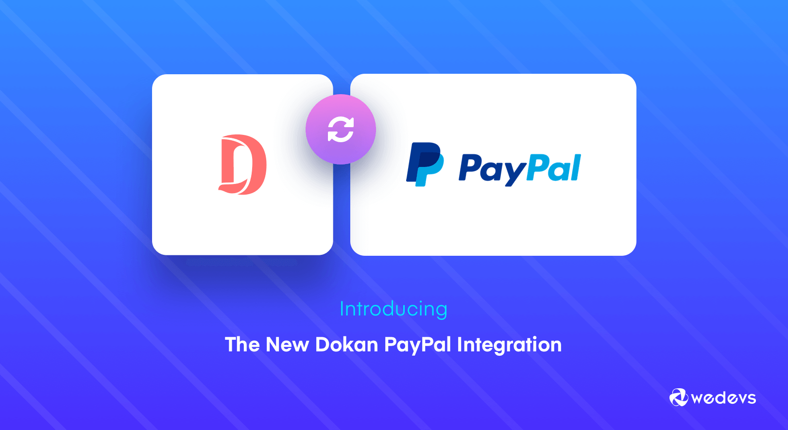 Dokan PayPal Integration: Now Flexibility is Yours as a Marketplace Owner!