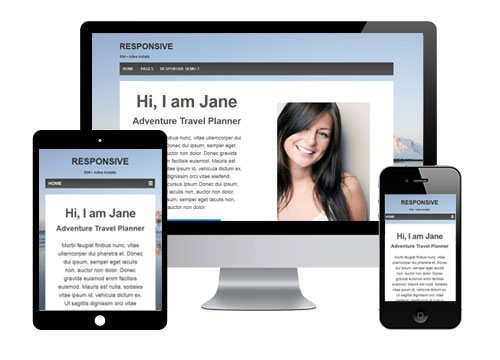 Mobile-Friendly WordPress Theme